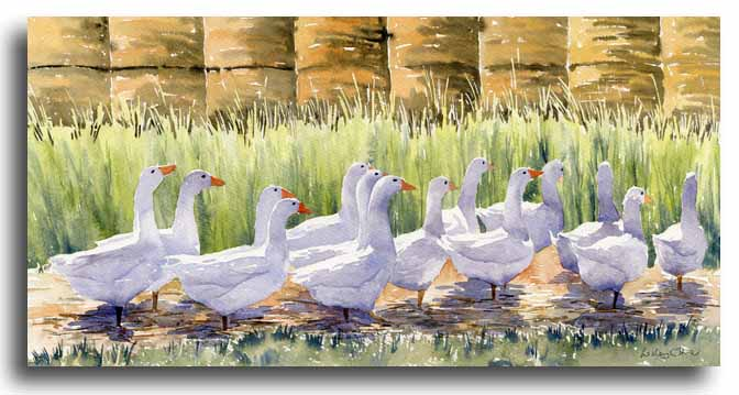 Original watercolour painting of geese by artist Lesley Olver